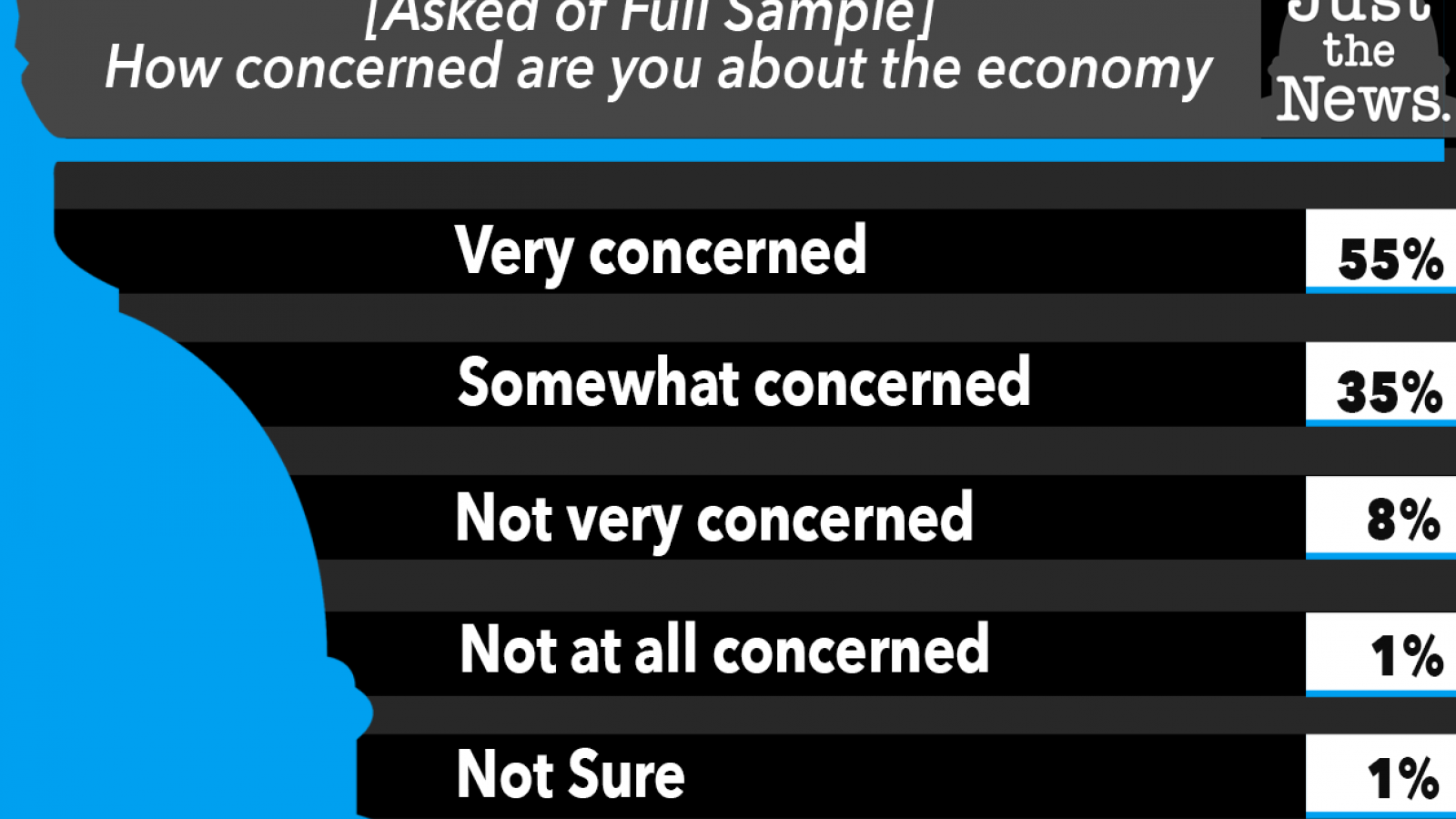 Just the News Poll, How concerned are you about the economy?
