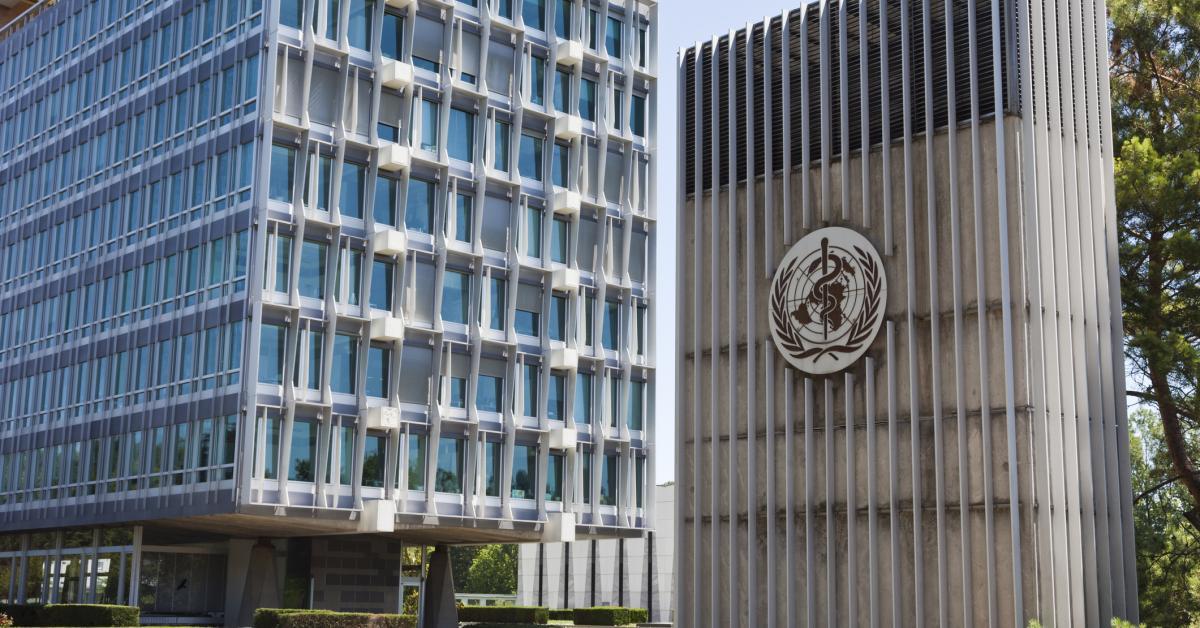 The World Health Organization   (mseidelch/Getty)